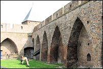 de binnenzijde van de kasteelmuur van kasteel De Doornenburg