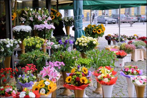 Zoutmarkt in Breslau of Wroclaw