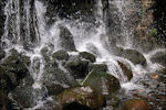 Waterval in Sonsbeekpark