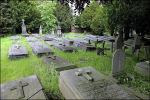 Begraafplaats Daalseweg